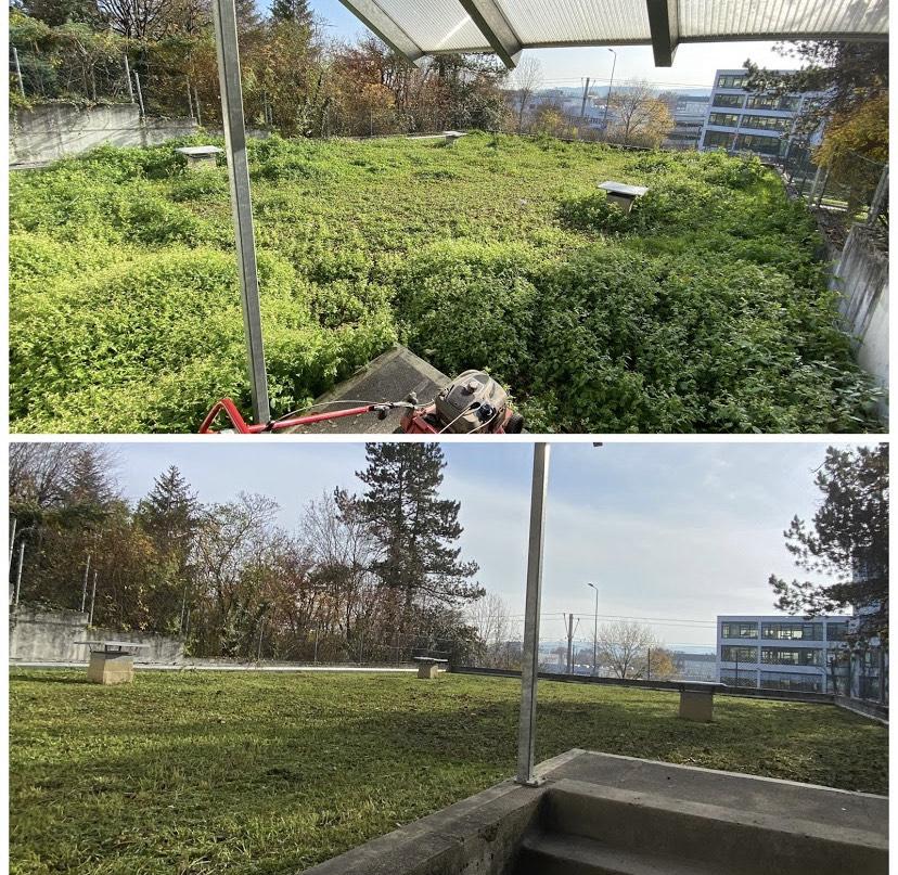 Gartenservice Stuttgart - Mullis